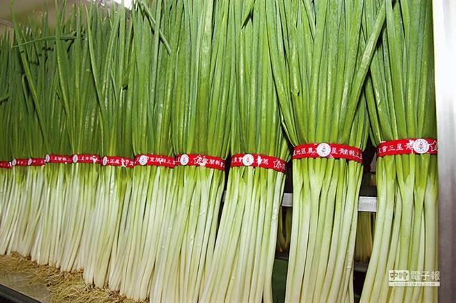 農糧署表示,蔥價近期可望回穩。(資料照,記者簡榮輝攝)