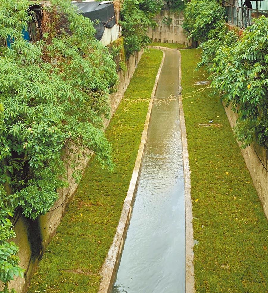新北市水利局為改善汐止區智慧溪汙水惡臭問題,特別施作子溝,將渠道縮減,使水流加速流進基隆河,解決淤泥、垃圾堆積問題。(張睿廷攝)