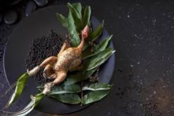 美國新秀名廚首度來台端驚喜料理!大讚:台灣物產好棒