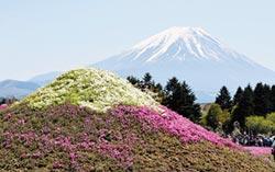 四大要素 造就日本第一長壽縣
