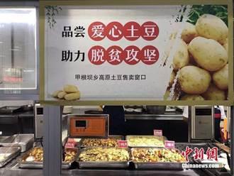 有洋蔥……陸大學師生6天吃掉11.5噸馬鈴薯
