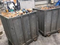 桃園八德禽屠宰場發現禽流感 銷毀1450隻紅羽土雞
