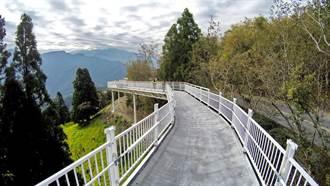 清境高空觀景步道全程完工 景觀加量不加價