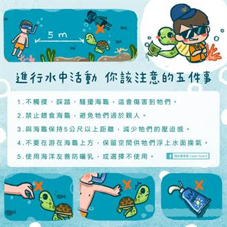海巡護海龜海報 竟有外星文、傑尼龜文