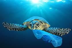 塑膠袋成環保殺手 發明者之子吐驚人真相