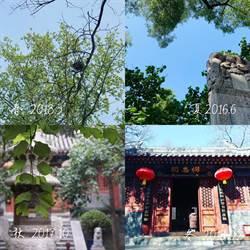 大陸人看台灣》北京法源寺 十年讀一書(下)