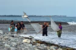 台東縣政府公告 這兩條溪每年4、5月禁捕日本禿頭鯊