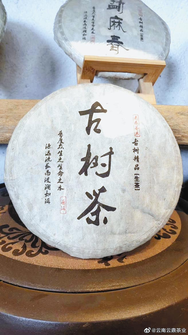 普洱茶是以古樹茶揉製,但市場茶餅品質魚龍混雜,圖為示意圖。(取自新浪微博@雲南雲鼎茶業)