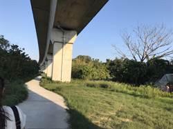 樹林高鐵綠廊道怎麼妝點?200萬經費邀市民來決定