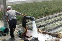 逃逸移工大掃蕩苦了農民 議員轟政府對農人冷感