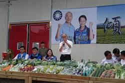 菜農痛批大官把老百姓當提款機 韓國瑜認同適當開放農業移工
