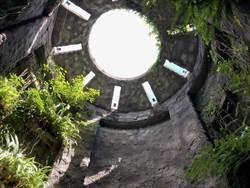日本高知牧野植物園像座植物知識大寶庫