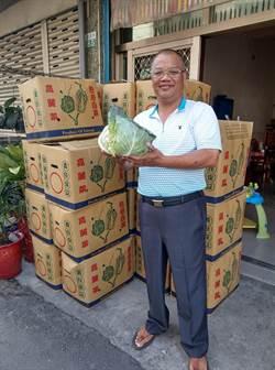 里長化身「賣菜郎」做公益 網友響應月內狂銷2800顆