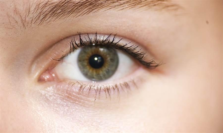 青江菜中的維生素A能避免乾眼症。(圖片來源:Pixabay)