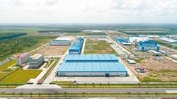 放眼東南亞 正隆V計劃 3年後營收破500億