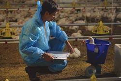 台灣農業標準學會 推動人道與友善飼養
