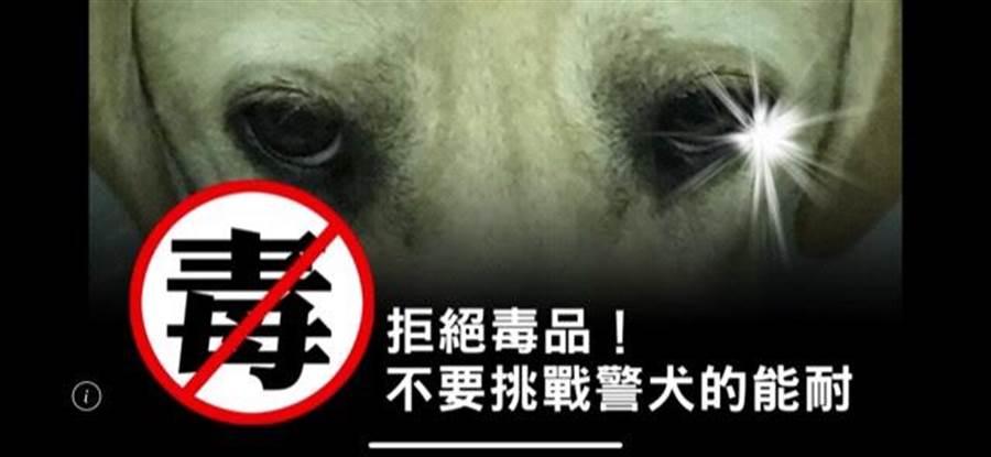台中市警察局警犬隊長陳玉梅說,就算藏毒一流的歹徒,終究栽在緝毒犬靈敏鼻子上。(台中市警察局提供/張妍溱台中傳真)