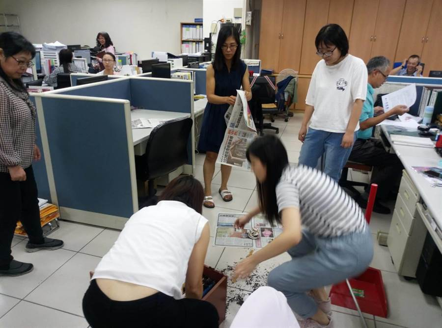 雲林縣勞工處被思覺失調患者翻桌,職員收拾散落的盆栽、公文櫃等。(許素惠攝)