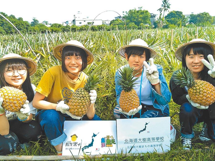 「日本北海道大樹高等學校」一群高中生到高雄市大樹區鳳梨田,體驗一日農夫生活。(高雄市農業局提供/林雅惠傳真)