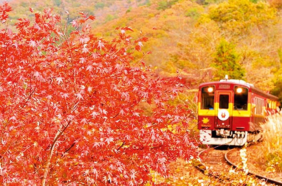 KLOOK推薦華麗復古照行程,在日本東京足利市,能看到復古的渡良瀨溪谷鐵道小火車穿過楓林的景色,3240元。(KLOOK提供)