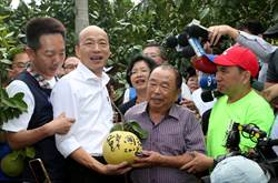 民調狂升 網激動:黃金交叉、韓總統來了!