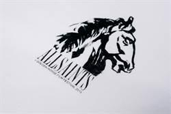 AllSaints攜手金馬 首度推出專屬紀念T恤