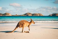 澳洲課徵背包客稅被判違法
