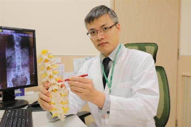 亞大醫院骨科主治醫師羅達富拿起人體脊椎模型,指出患者椎間盤突出位置。(林欣儀攝)