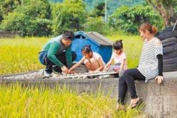 張志強種米教球 守護部落土地
