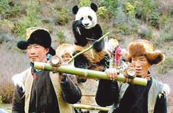 大熊貓公園四川片區 功能區四變二
