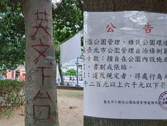 獨/「英文下台」北投公園樹木遭人惡意刻畫