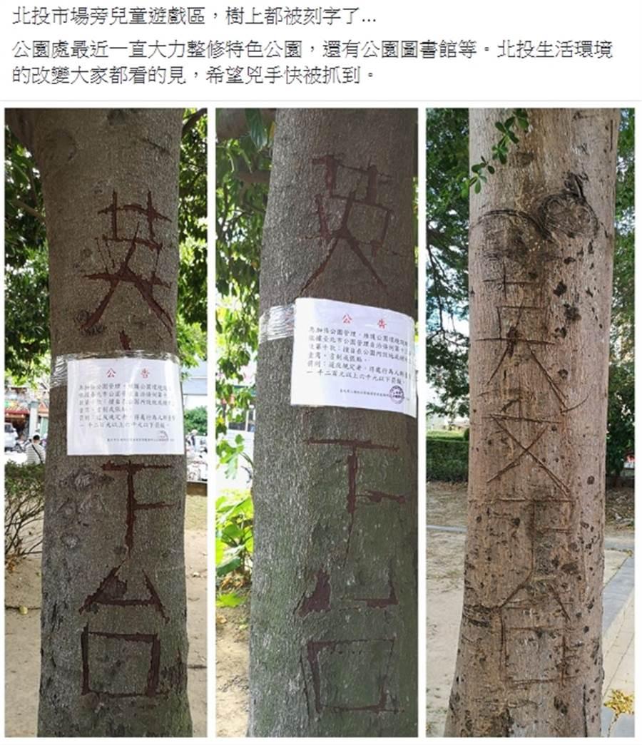 網友Po文籲盡快找到惡意刻樹兇手。(照片/翻攝《台北之北投幫》社團)