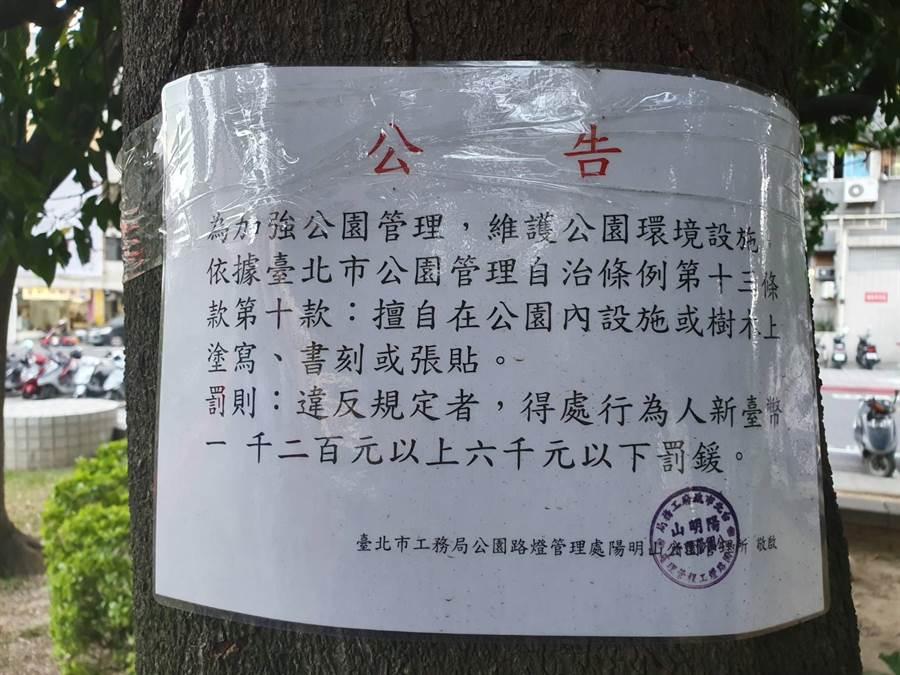 北市府公園管理處在樹上貼有公告與罰則。(照片/游定剛 拍攝)