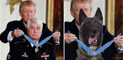 川普授與英雄狗狗榮譽勳章?玩笑還是真實