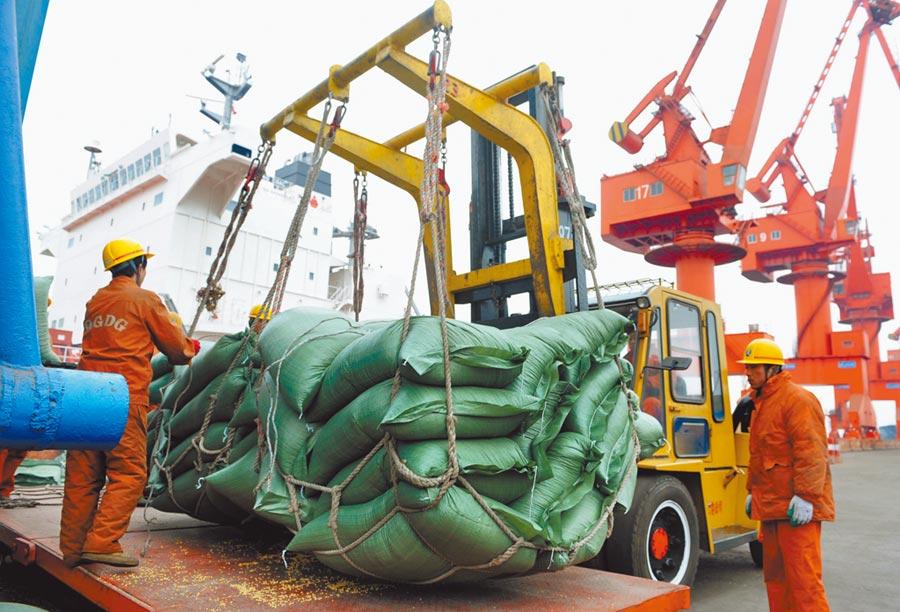 美國農業部公布,截至10月24日當周,中國購買了48.1萬噸美國大豆。圖為工人在青島港碼頭轉卸美國運來的大豆。(新華社資料照片)