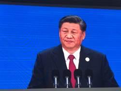 共建世界經濟 習近平堅決反對單邊保護主義