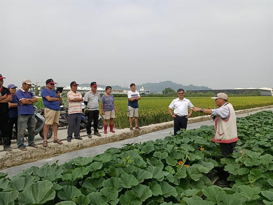 栗子南瓜田間栽培管理指導邀請高德錚博士(右)擔任講師。(張晉銘攝)