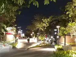 綠蔭廊道串連北捷中山~雙連站!周末市集、音樂會、美食添繽紛