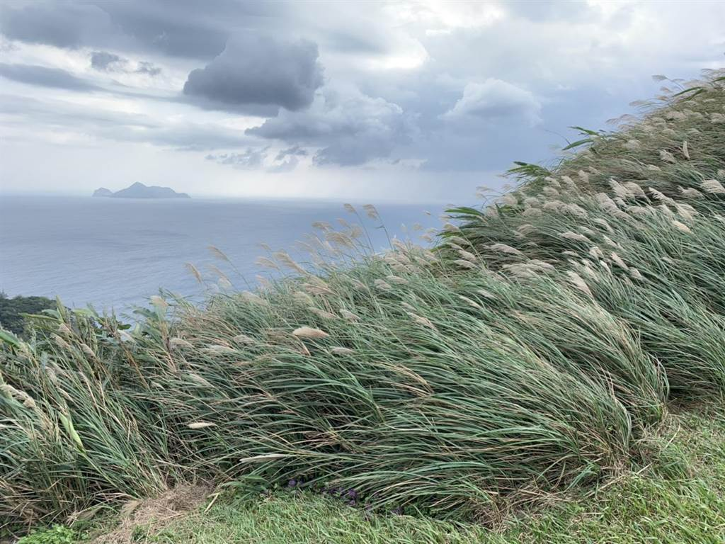 走在草嶺古道可遠眺龜山島,一覽山海美景。(東北角風管處提供/許家寧新北傳真)