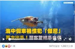 一次噴30萬!小琉球最囂張碰瓷王 潛水客聞風喪膽抱胸逃跑