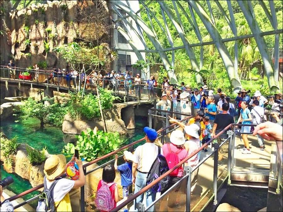 台北市立動物園熱帶雨林館首次結合LINE Beacon,遊客只要加好友後進入熱點區域時自動傳遞訊息至手機。(台北市立動物園提供/游念育台北傳真)