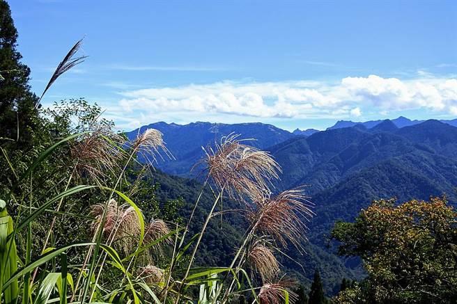 今(9日)水氣減少,轉為乾冷天氣型態,僅東北部短暫雨,台灣各地早晚偏涼。(林宜靜 攝)