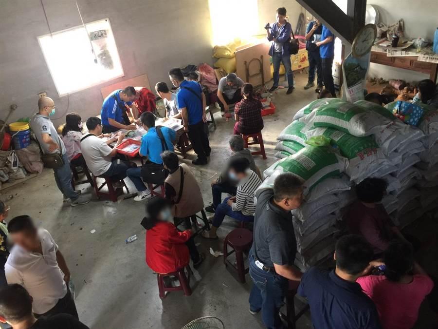 台南警方於麻豆一處柚園內查獲撲克牌職業大賭場。(翻攝照片/劉秀芬台南傳真)
