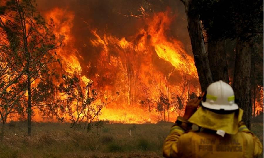 澳洲新南威爾士省東北部多處野火延燒至今,造成至少3死30多傷,7人下落不明,超過150間建築物被毀。(路透)