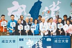 深綠大團結 串聯30本土團體 獨派挺英 成立守民主護台灣大聯盟