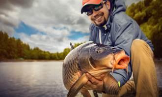 漁民捕獲巨型怪魚 鑑定結果專家驚