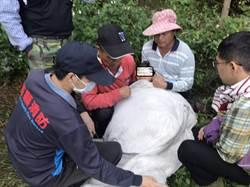 百人搜山營救 走失3天身障女離奇趴果園獲救