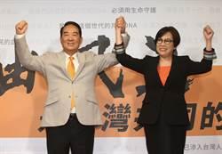 宋參選「小私害大公」 國民黨:如何見小蔣?