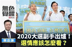 無色覺醒》賴岳謙:2020大選副手出爐!選情應該怎麼看?