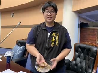 「黑色尖兵」議員魏嘉彥提黑水虻幫吃廚餘